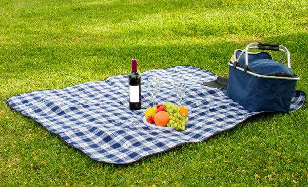 Picnic Blanket Blue Amp White Check 50 X60 Professional